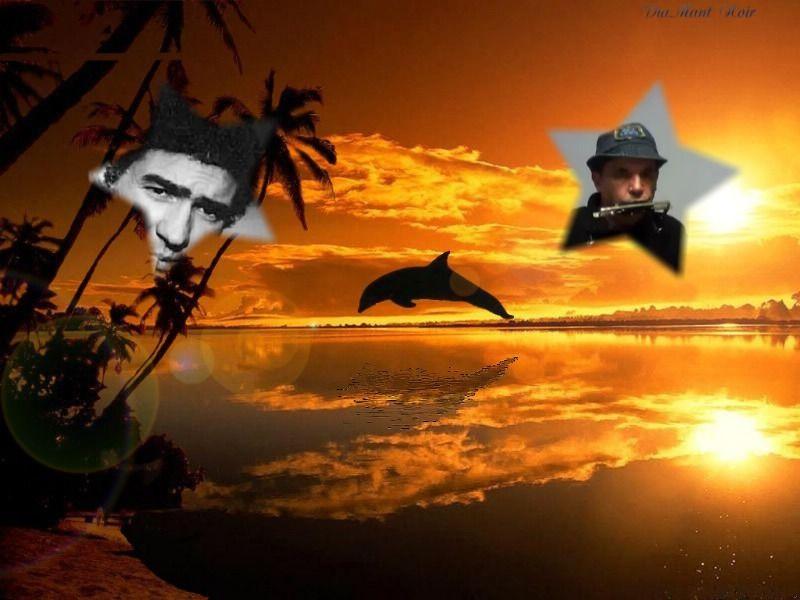 La plage aux romantiques danel teston for Auteur romantique